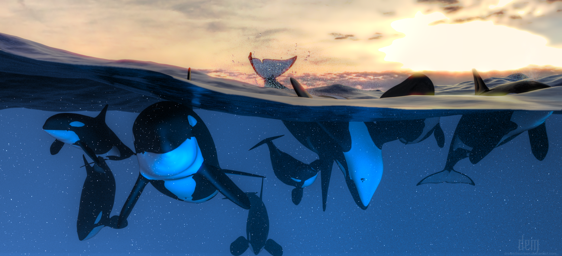 Orca Play by DrowElfMorwen