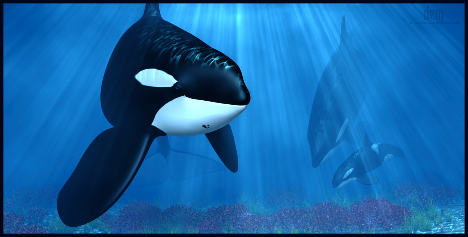 Tidal Wave the Orca by DrowElfMorwen
