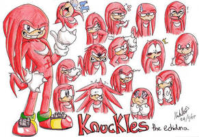 Knuckles the Echidna by mmishee
