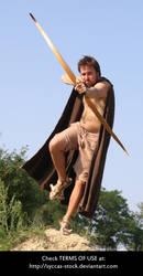 Robin Hood 10 by syccas-stock