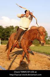Horseback Archer 10 by syccas-stock