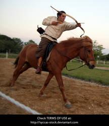 Horseback Archer 12 by syccas-stock