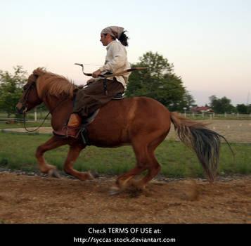 Horseback Archer 15 by syccas-stock
