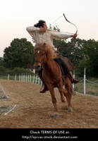 Horseback Archer 16 by syccas-stock