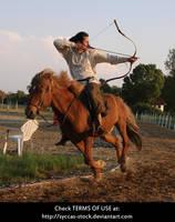 Horseback Archer 17 by syccas-stock