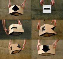 logo box by lisashocket