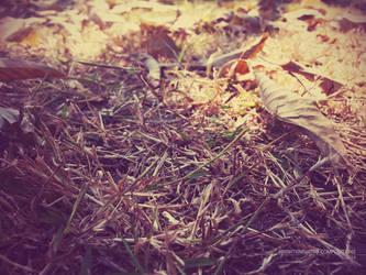 Sun dried greens by BrightKnight