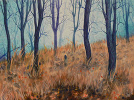 Forest by SChappell