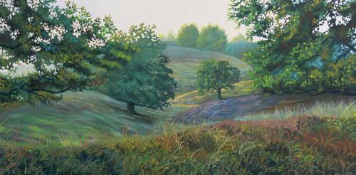 Field 2 by SChappell
