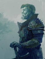 The Commander by sinakasra