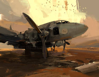 Old Plane by sinakasra
