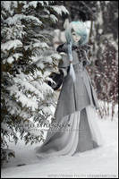 Snowtrail by yenna-photo