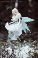 Soft Landings by yenna-photo