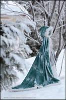 Garden of Snow by yenna-photo