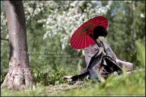 Sunlit Gardens by yenna-photo