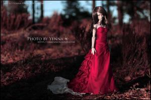 Dark Red by yenna-photo