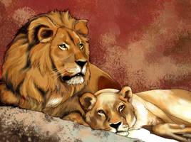 Lion et Lionne by HeYaA