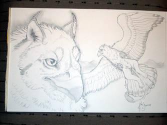 gryphon flight by cloudstar-wolf