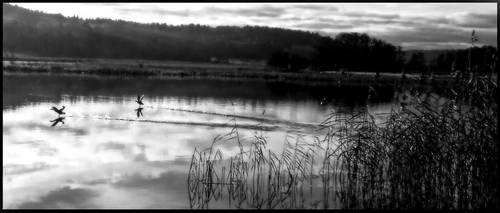 Daybreak by KarinClaessonArt