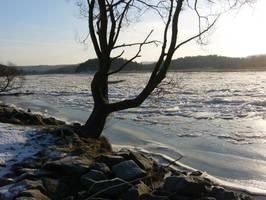 Winter 8 by KarinClaessonArt
