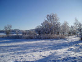 Winter 42 by KarinClaessonArt