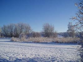 Winter 49 by KarinClaessonArt