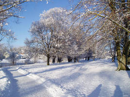 Winter 53 by KarinClaessonArt