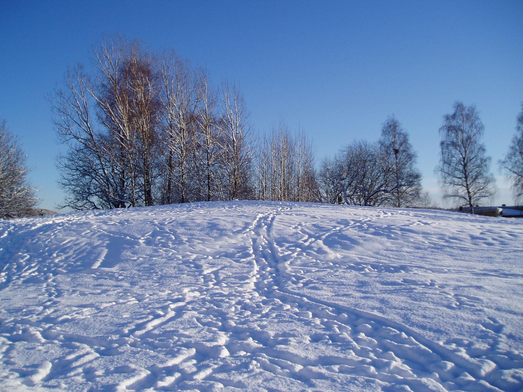 Winter 54 by KarinClaessonArt