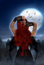 Moonlight by KarinClaessonArt