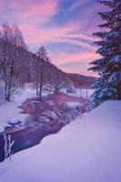 Laced In Frost by davidrichterphoto