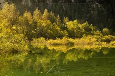 Emerald Waters - Lago di Landro, Dolomites, Italy by davidrichterphoto
