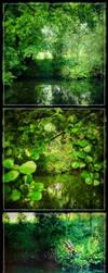 Green Cantabria by mayoofka