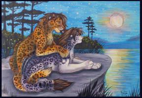 At the night lake by Fur-kotka