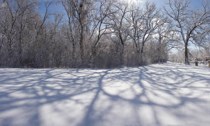 Shadows on Snow Field by Archangelical-Stock