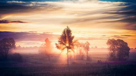 Flaming Autumn by dspiridonov