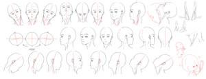 Resources: Head-Neck 1 by deeJuusan