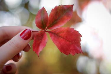 Autumn by HammettLady