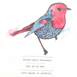 Birds Carry Diseases by Angie090485