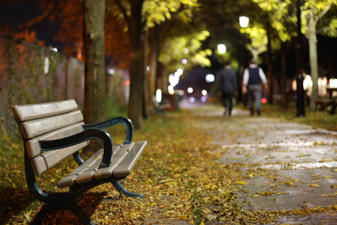 lonely bench by artykul8