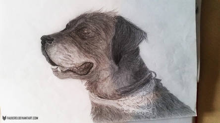 old doggo by FauxeRei