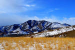 Prairie Winter on the Front Range by Delta406