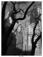 New York New York by allmighyttallest
