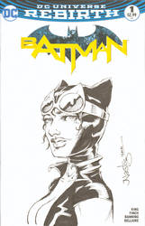 Catwoman Commission Sketchcover by ElfSong-Mat