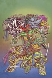 Teenage Mutant Ninja Turtles ish 67 cover by ElfSong-Mat
