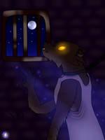 Full Moon ! by Darkim-Flamos