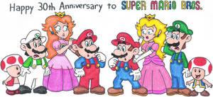 Super Mario Bros. 30th Anniversary by nintendomaximus