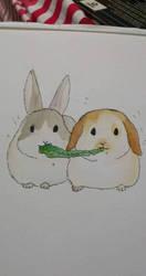 Cute bunnies by GraceLee583