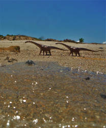 Cretaceous Coast of Malawi by zoome3