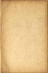 Paper008 by AbigelStock