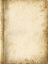 Paper013 by AbigelStock